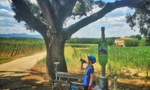 cyklistika s deťmi